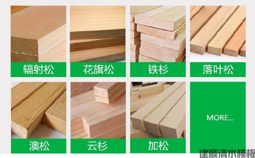 东莞市建顺建筑设备有限公司(图4)